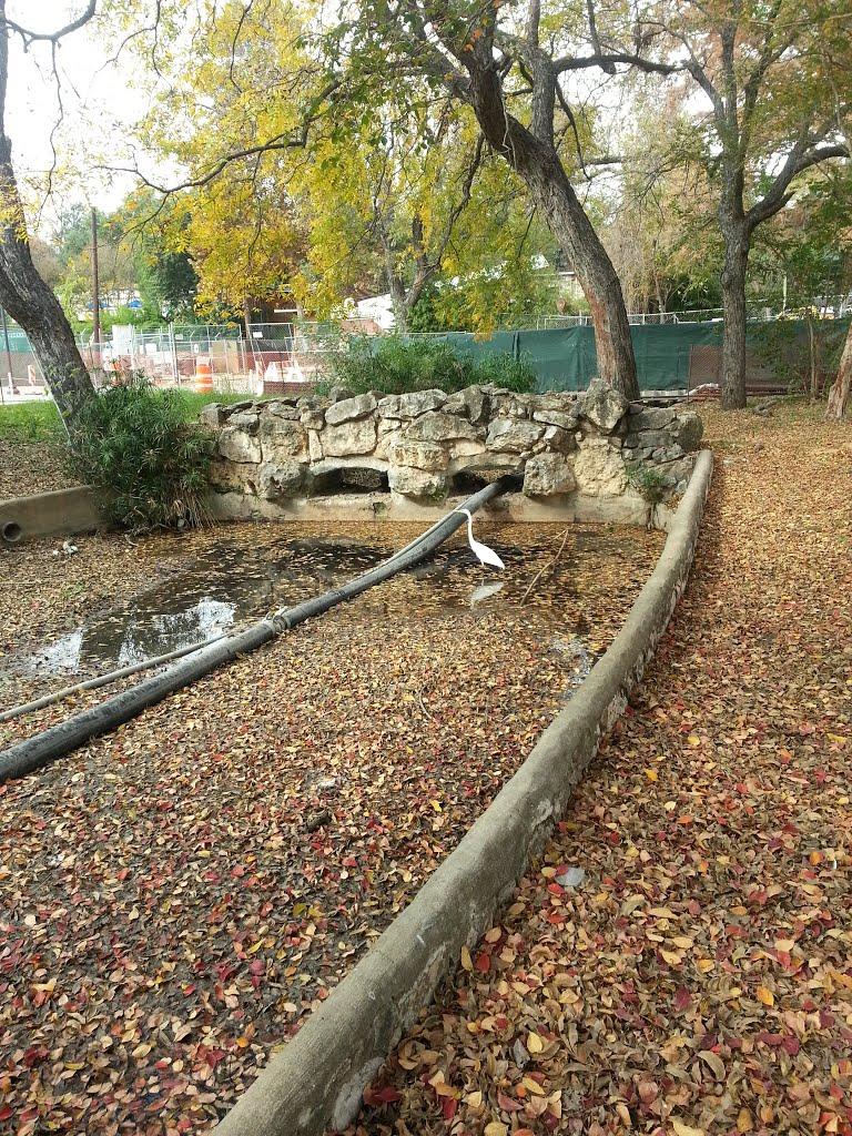 birds rock, Олмос-Парк