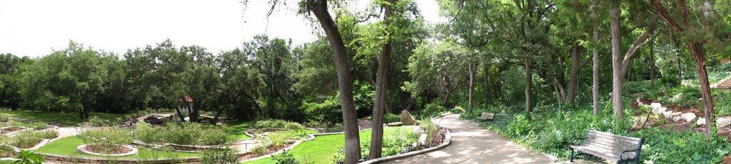 Austin- Zilker Botanical Gardens Rose Garden Overlook, Роллингвуд