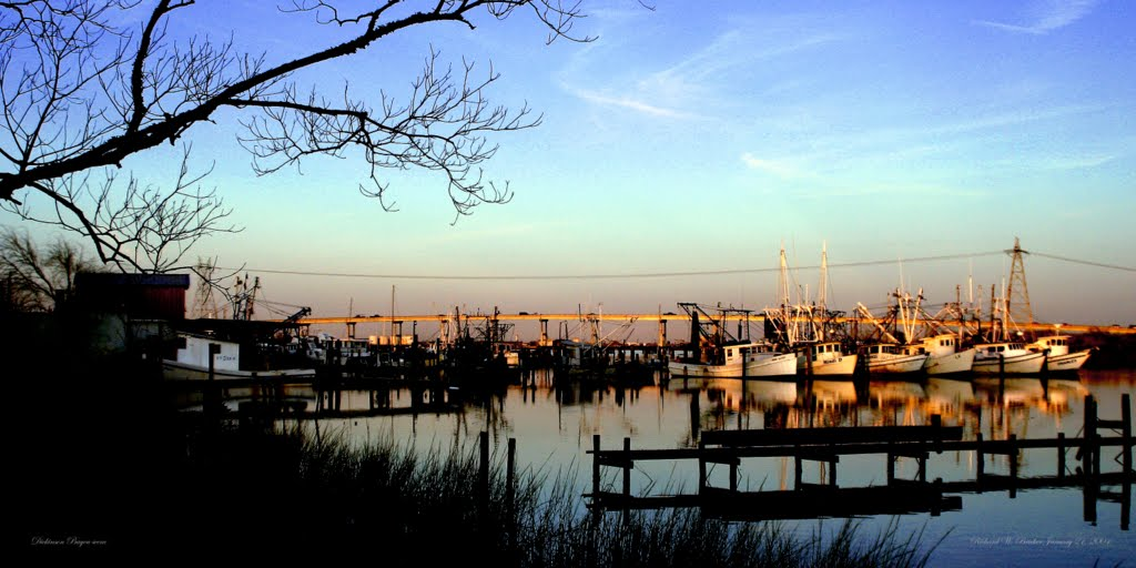 Dickenson Bayou in Winter Sunset, Сагинау