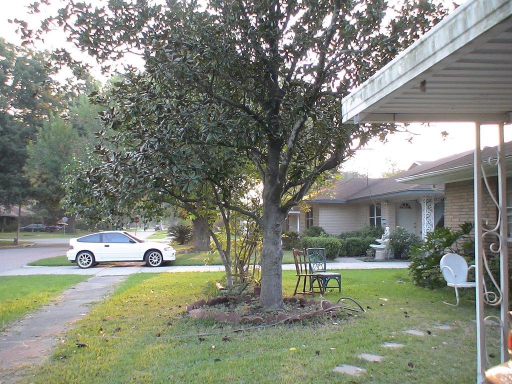 Morning Tree, Саут-Хьюстон