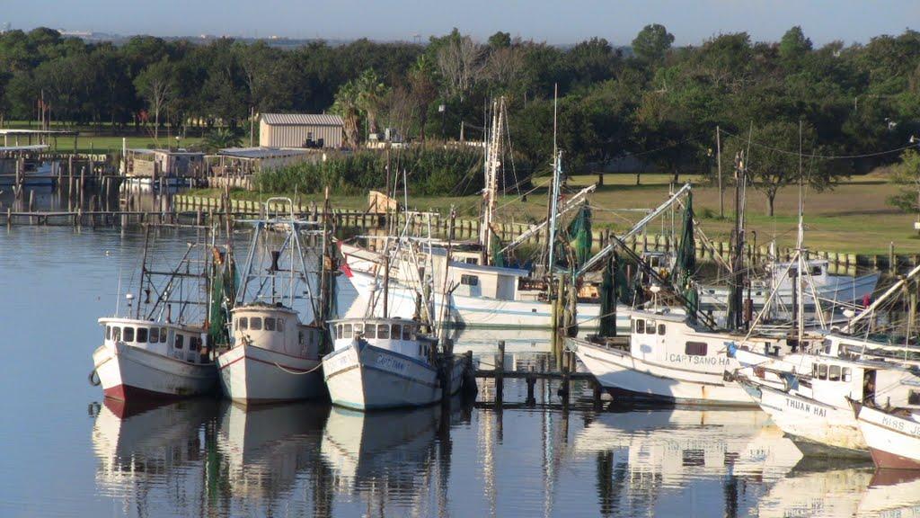 Fishing Boats Company, Сенсом-Парк-Виллидж
