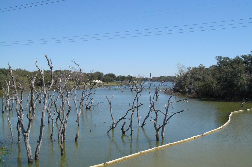 Coleto Creek Reservoir, Тафт