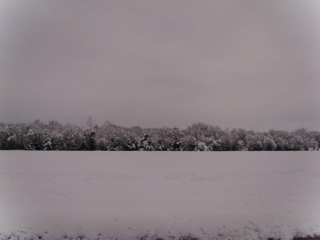 11 inches of fresh snow in Texas - 02/2010, Террелл