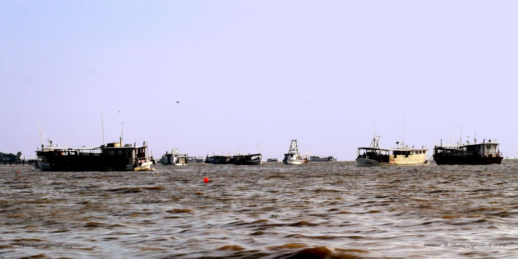 Many Oyster Luggers Dredging for Oysters to Transplant, Форт-Ворт