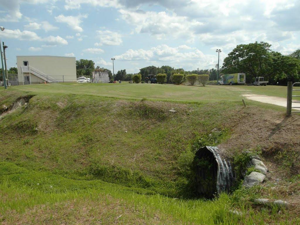 Tom Varn Park - Brooksville, Florida, Азали-Парк