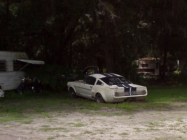 1966 Shelby GT350 in trailer park, NOT FOR SALE but it was, Brooksville Fla (2003), Индиан-Шорес