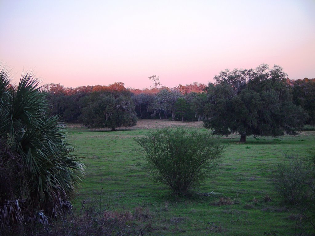 Lykes old fields at twilight, old Spring Hill, Florida (1-2007), Индиан-Шорес