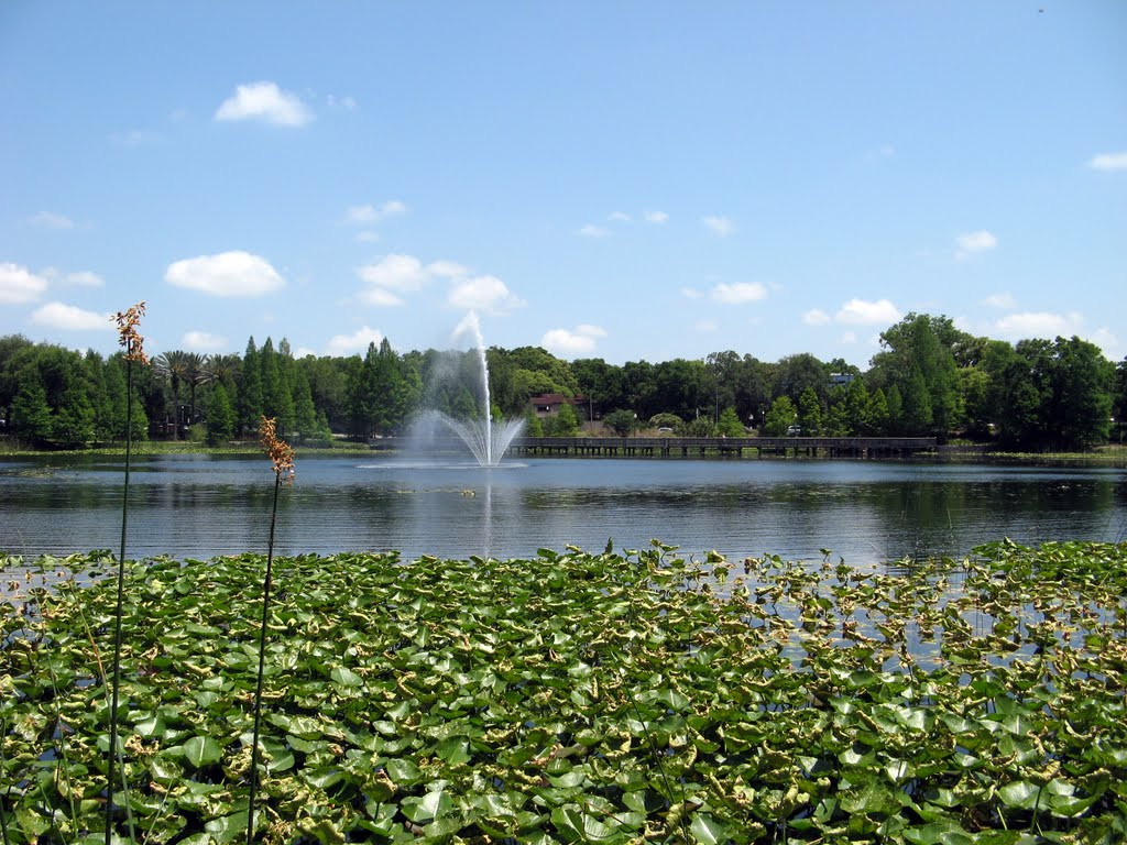 Lake Lily Fountain, Итонвилл