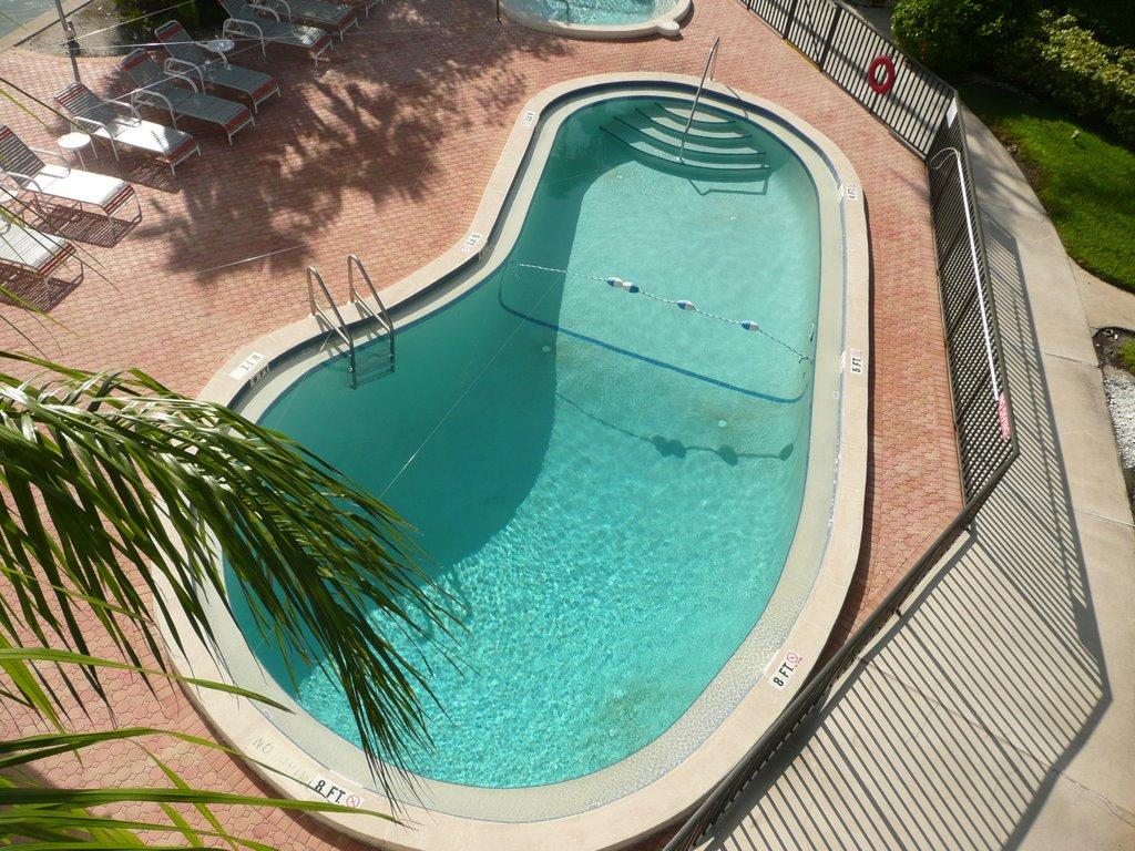 Island Estates Pool, Клирватер