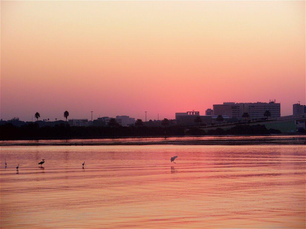 Multicolor sunrise, Клирватер