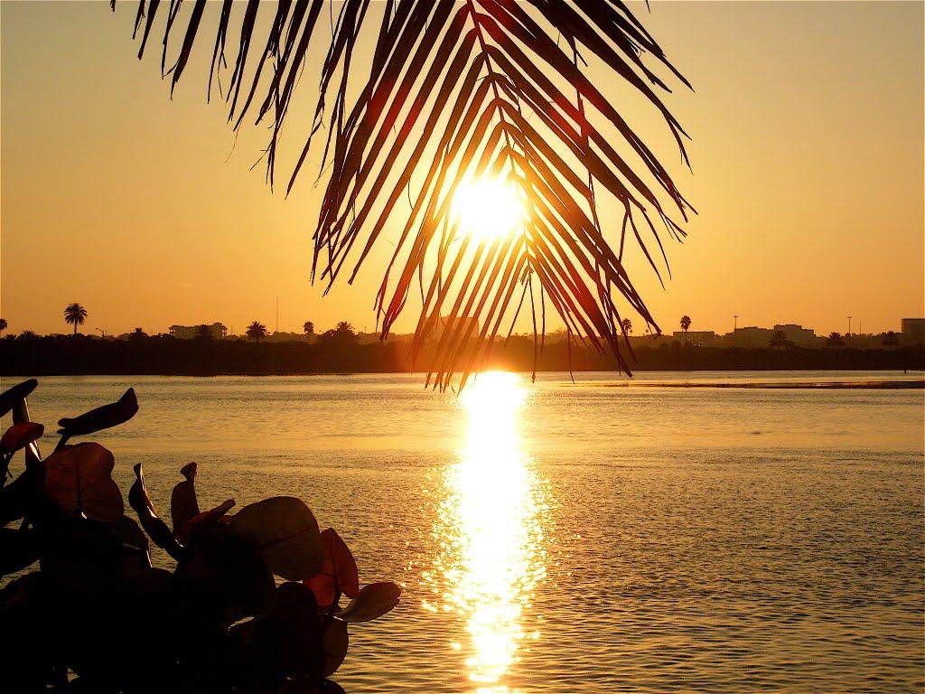 Morning Sun, Клирватер