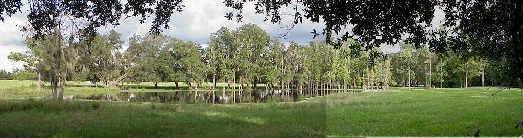 cypress pond, Saturn road, Hernando County, Florida (9-4-2002), Лак Магдален