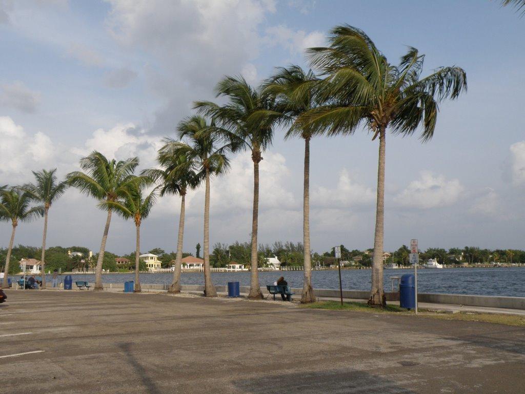 Intercosta,Lantana ,Florida, Лантана