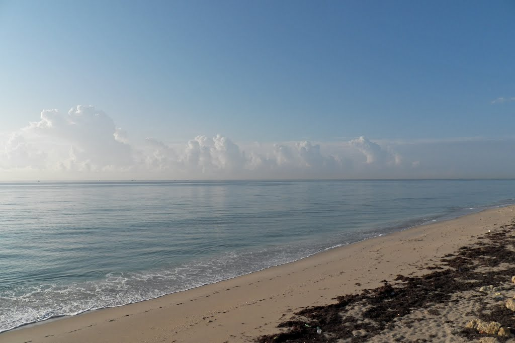 When the ocean stood still, Лантана