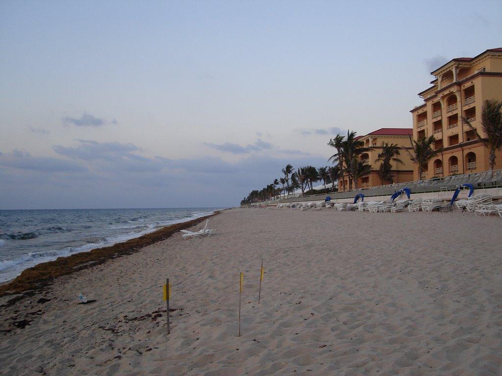 Palm Beach Hotel - Very Nice, Лантана