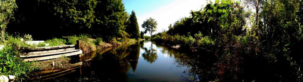 Largo Central Park Nature Preserve , Largo Fl , 33770 , Largophoto, Ларго
