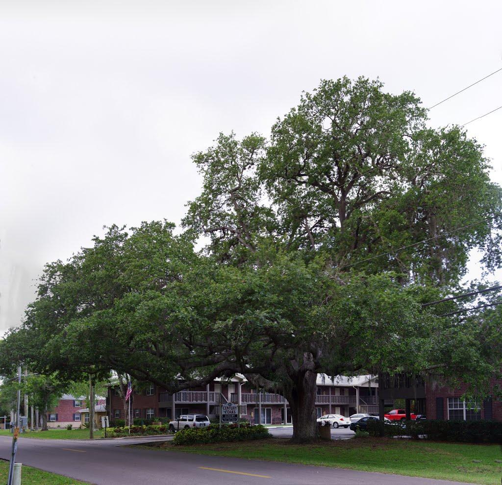 2013 05-02 Largo, Florida - 14th St, Ларго