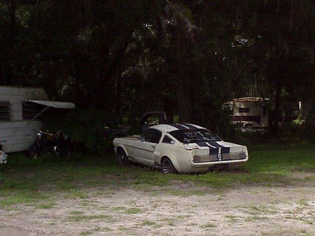 1966 Shelby GT350 in trailer park, NOT FOR SALE but it was, Brooksville Fla (2003), Лаудерхилл