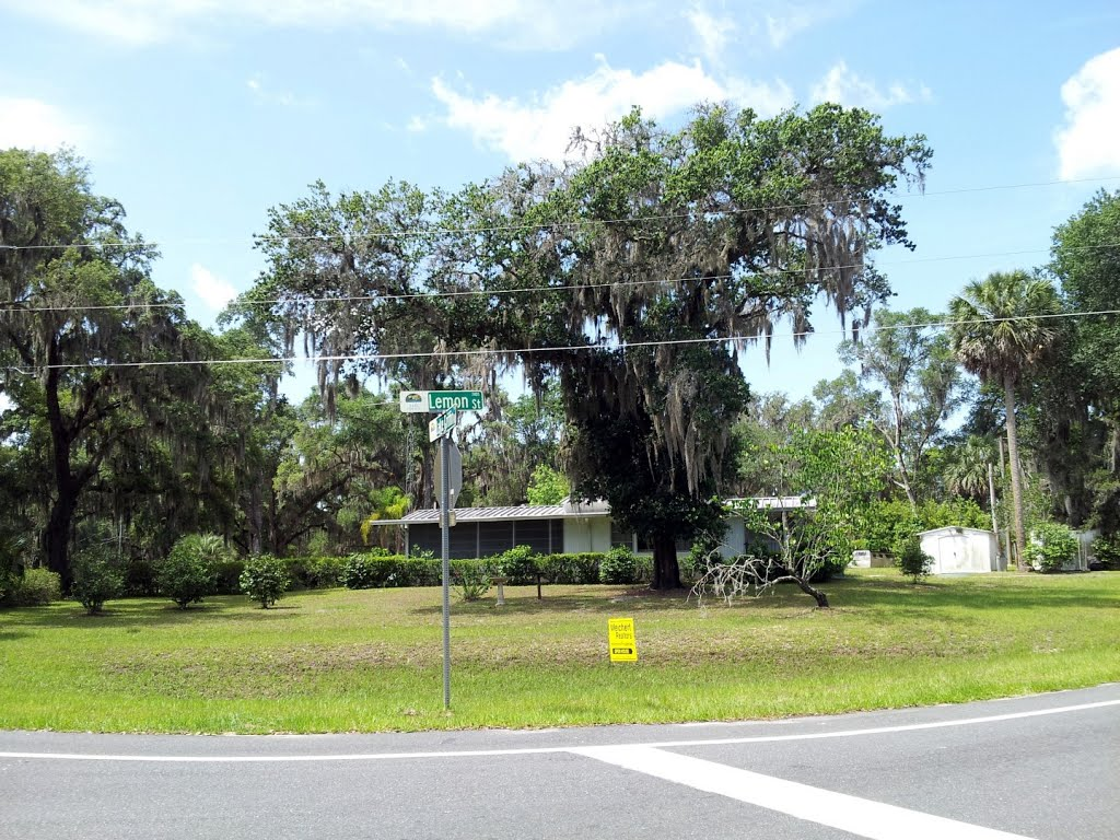 Intersection of Lemon Street and Lake Griffin Road, Lady Lake, FL, Леди-Лейк