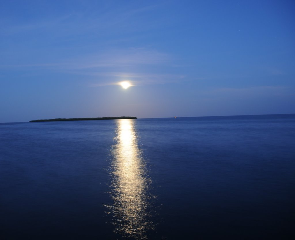 Moon Rise Tavernier FL, Тавернир