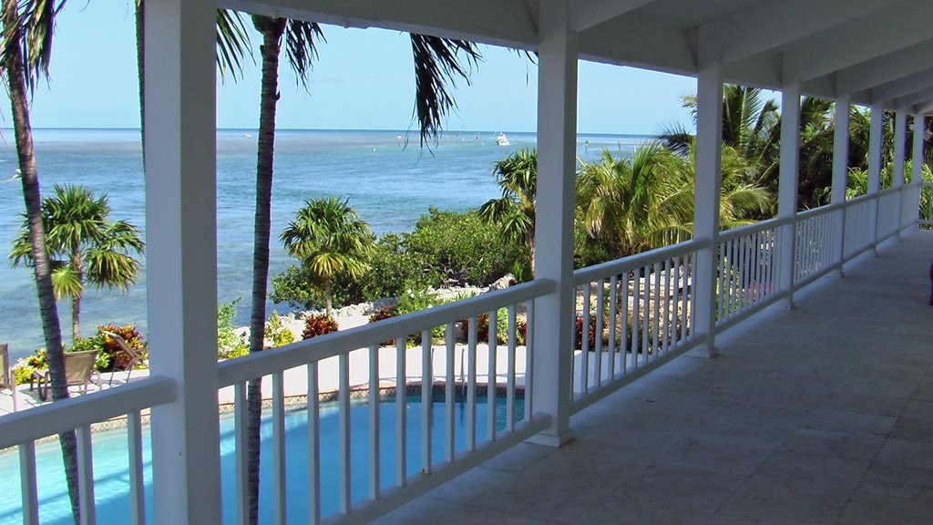 Martys in the Florida Keys, Тавернир