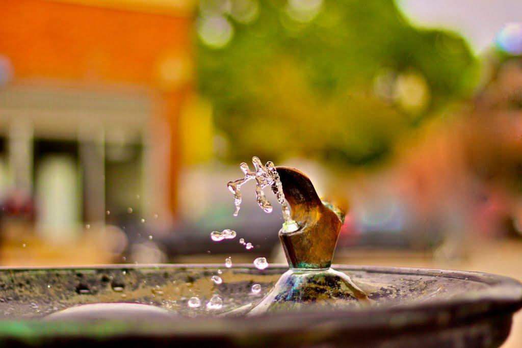 drinking fountain, Боунтифул