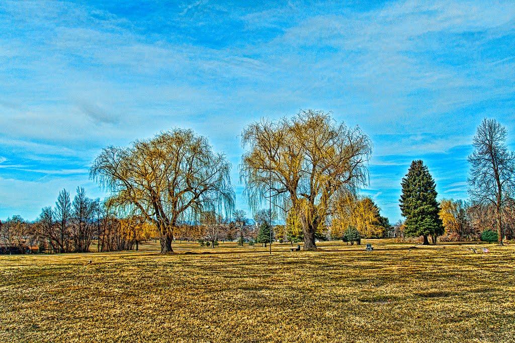Altorest Memorial Park #2, Вашингтон-Террас