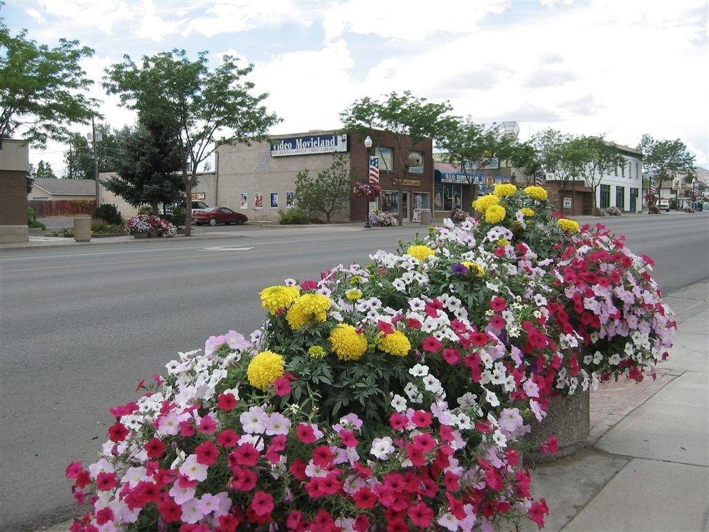 Vernal flowers on Main Street 08 2004, Вернал