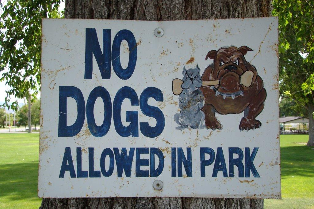Gunnison Park, Ганнисон
