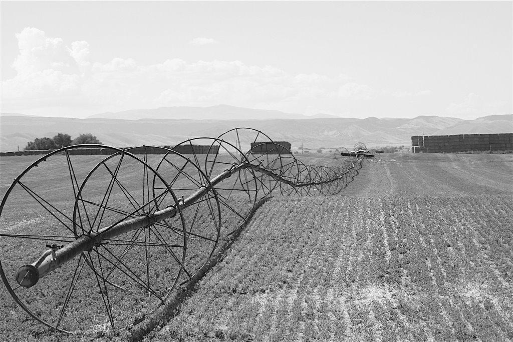 Farm field, Ганнисон