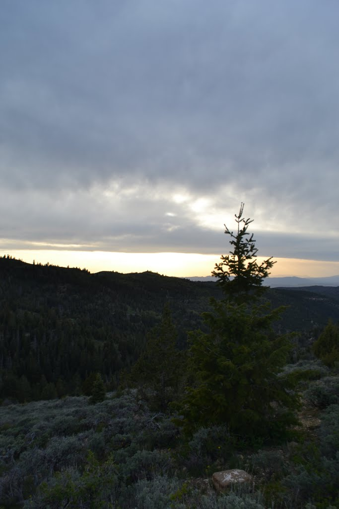 San Pitch Skyline view of Juab County, Коттонвуд-Хейгтс