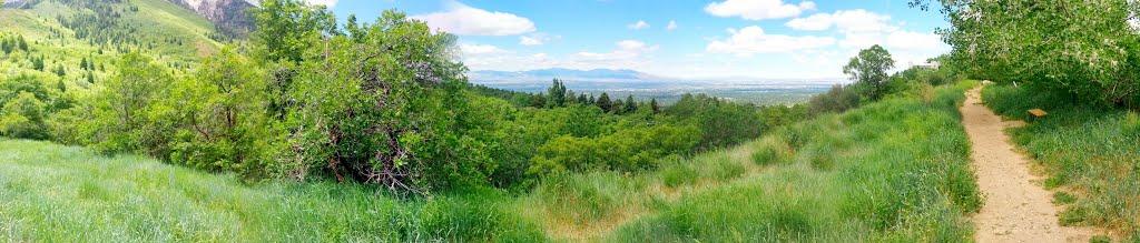 Salt Lake Valley from Neffs Canyon Trail, Маунт-Олимпус
