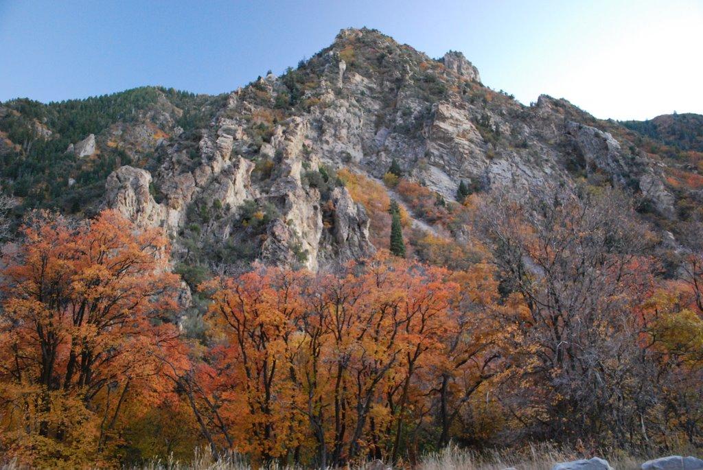 Fall in Mill Creek Canyon., Маунт-Олимпус