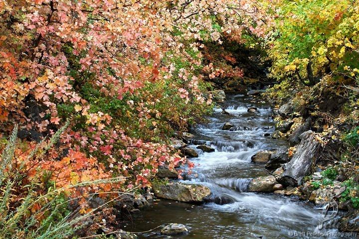 Millcreek in Fall, Маунт-Олимпус