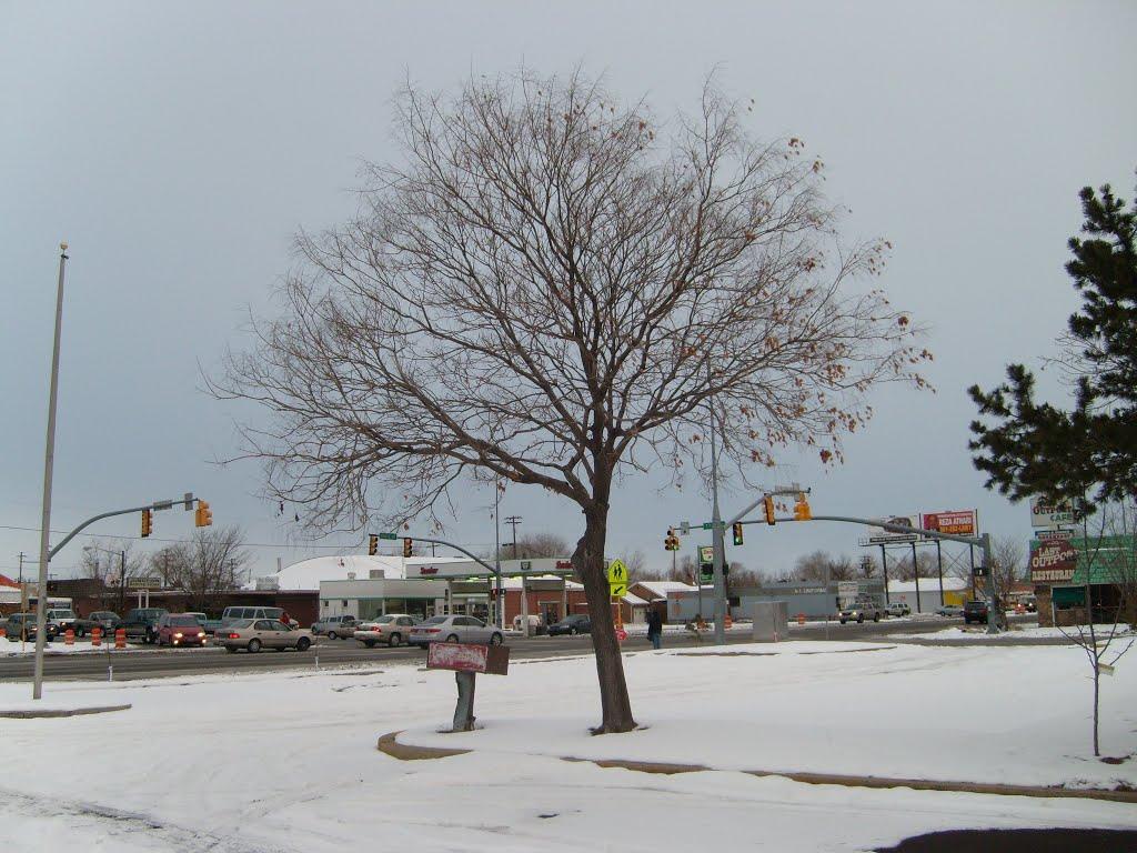 Winter scene, Мидвейл