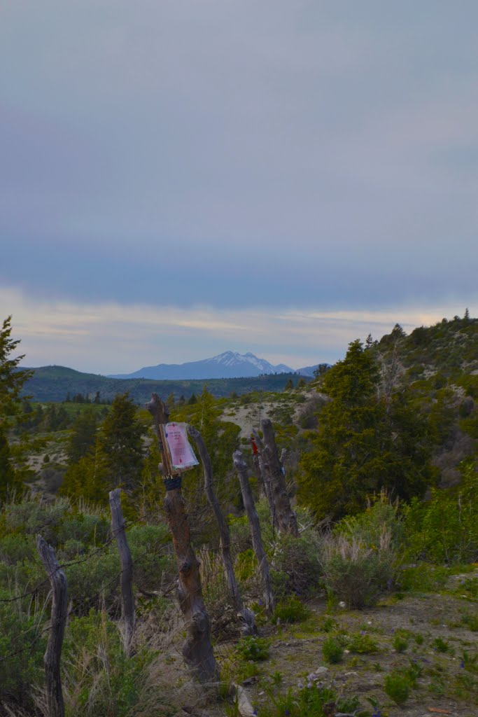 View of Mt. Nebo from San Pitch Skyline, Моаб
