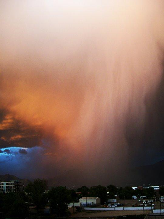 Salt Lake rainstorm, Муррей