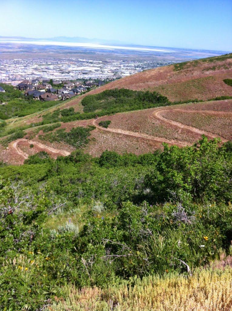 Wild Rose Trail in North Salt Lake, Норт-Солт-Лейк