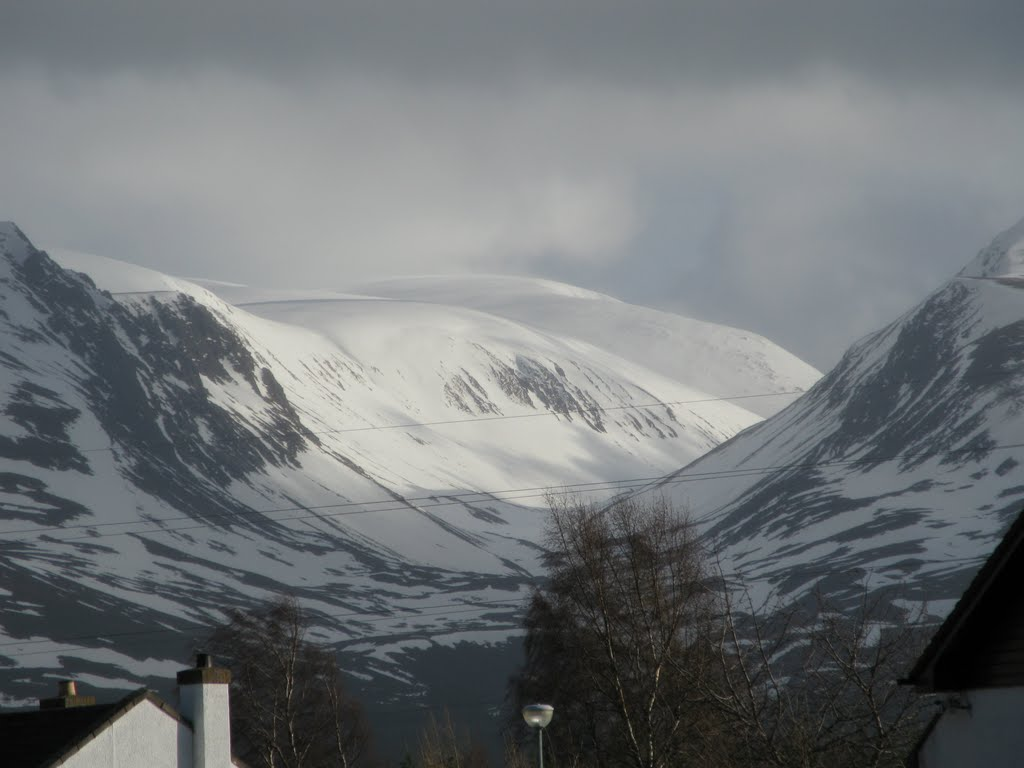 The Cairngorms from Dalfaber, Авимор