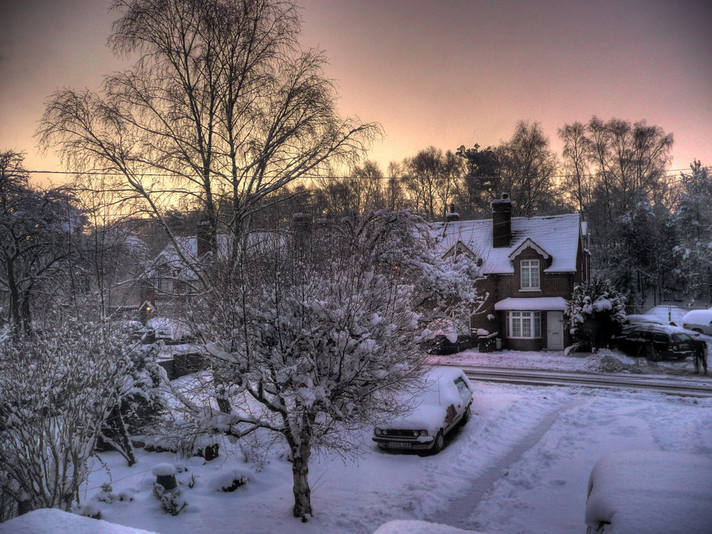Snowy sunrise over Brookwood (Feb 2009), Басингсток
