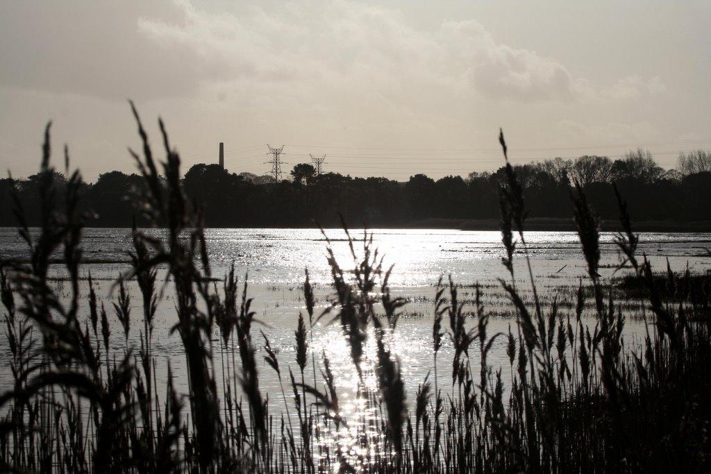 Holes Bay, Ватерлоо