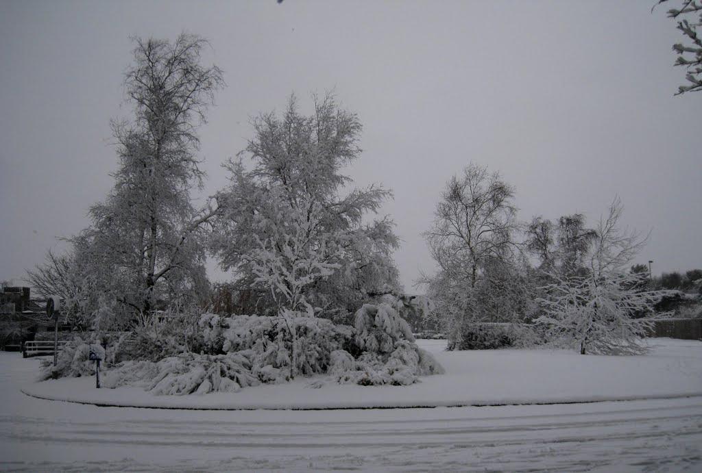 The entrance to Corfe Hills School., Ватерлоо