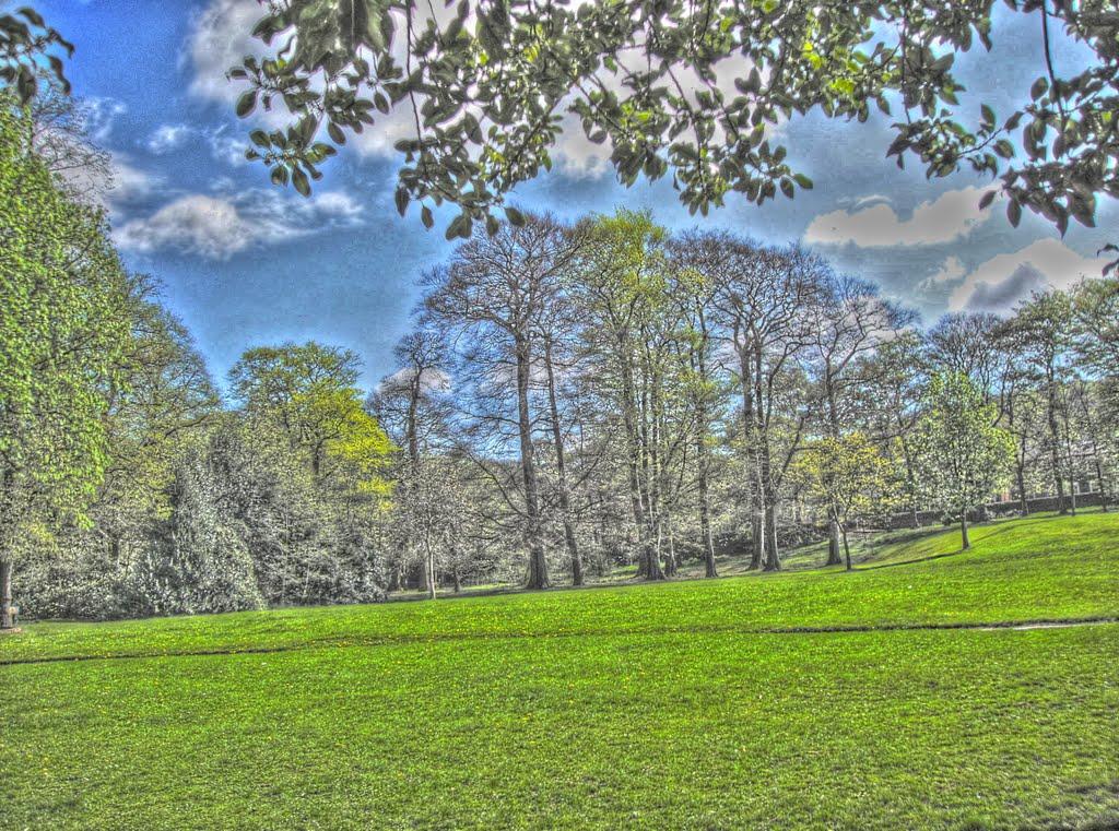Manor Park, Глоссоп