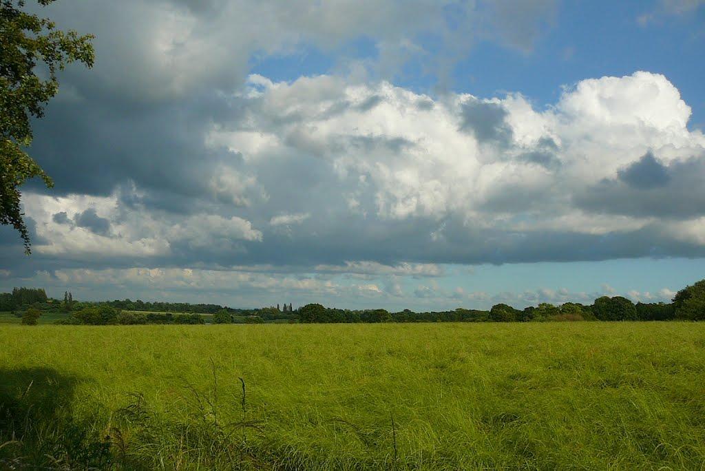 View to Lightshaw, Голборн