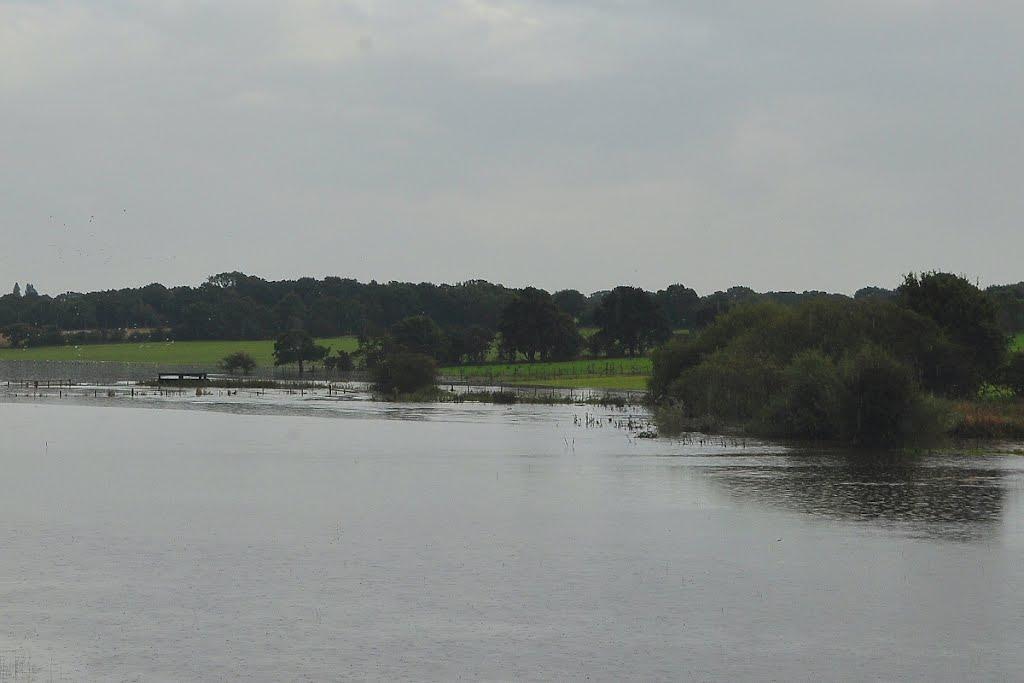 Copse Field in floods, Голборн