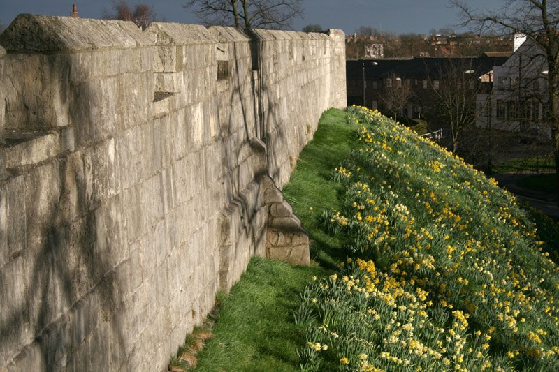 Walls, Йорк