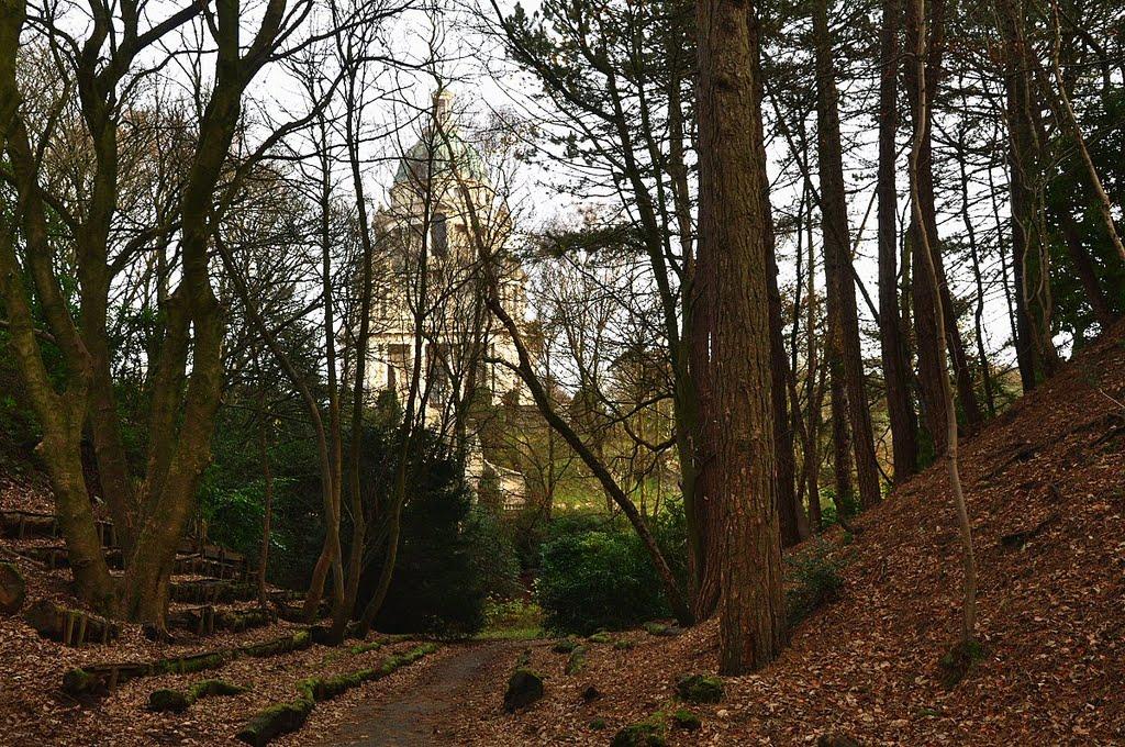 Through the trees ¬, Ланкастер