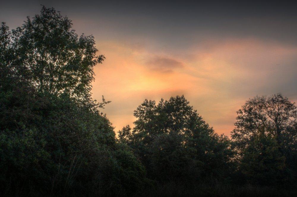 Sunset, Майденхед