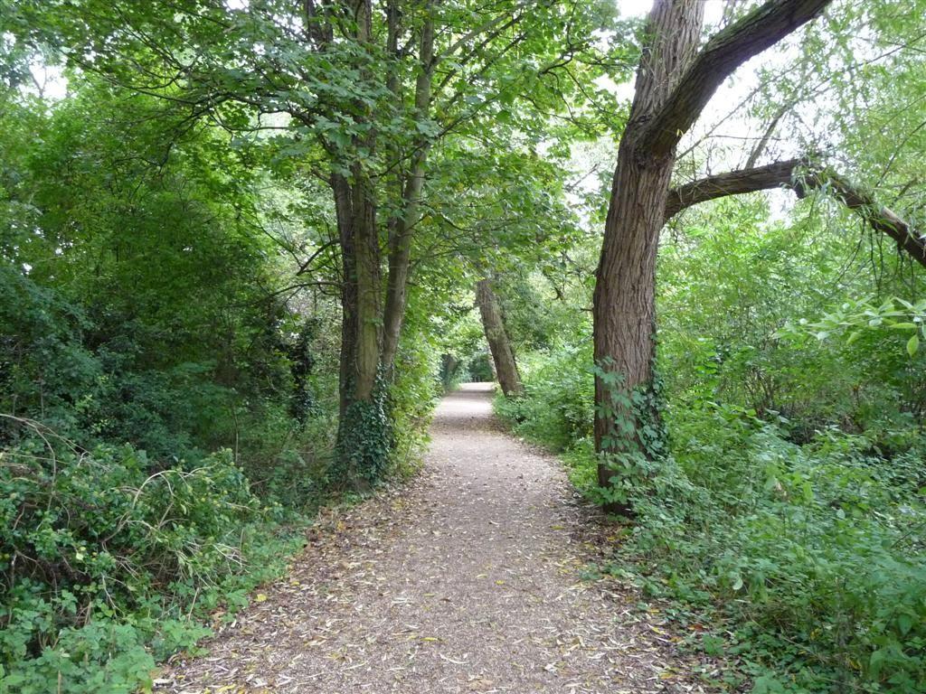 The Green Way, Майденхед