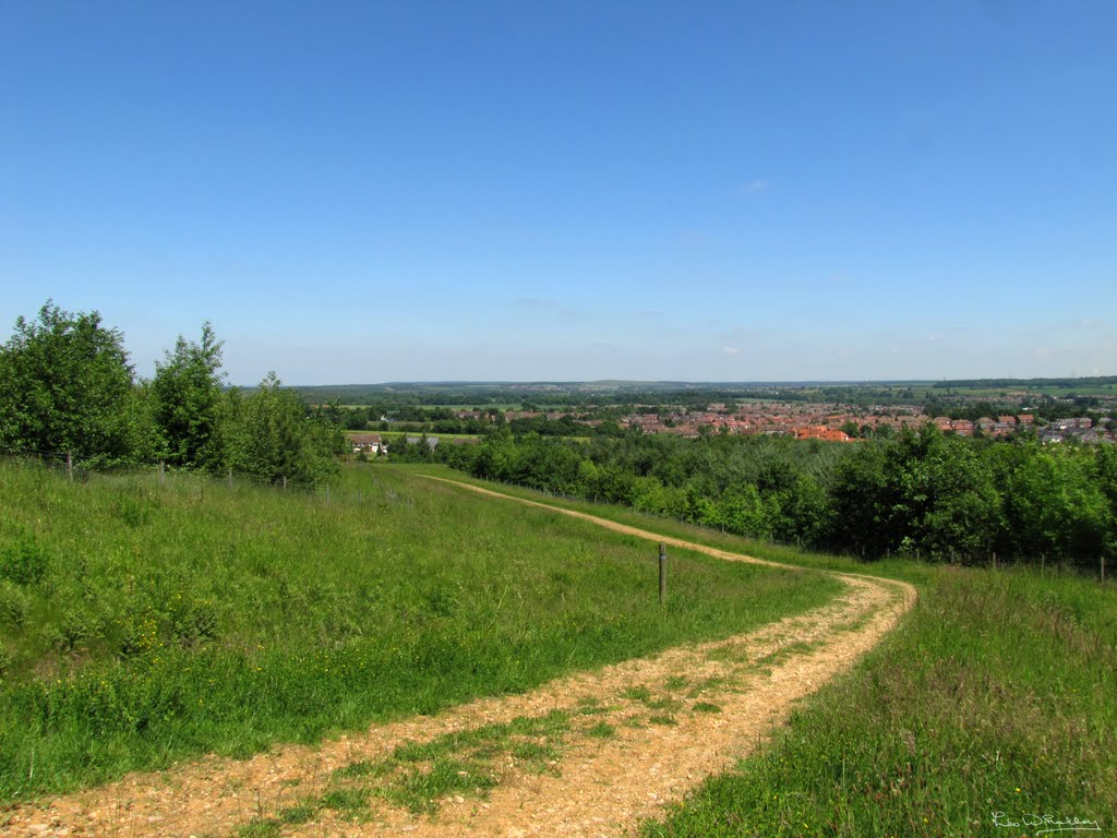 Highest Point of Oxclose Wood, Мансфилд